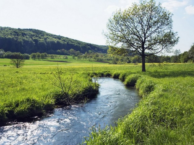 Río Carrales