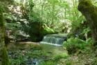 Riopanero o Río Hijedo