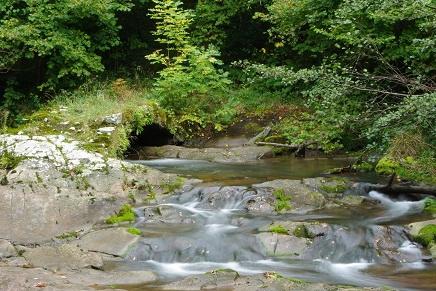 Río Irbienza o Hirvienza.