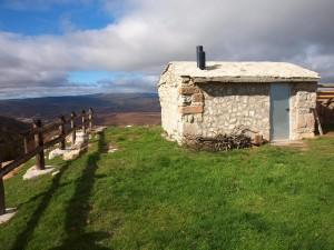 Damián Ganado y Cabaña - San martin Elines La Lora - miguel de arribas (110)