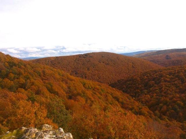 El monte Hijedo