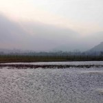 Laguna del Izarilla.