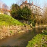 Ebro a su paso por Nestares