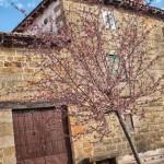 Villamoñico