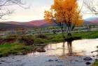 Río Camesa