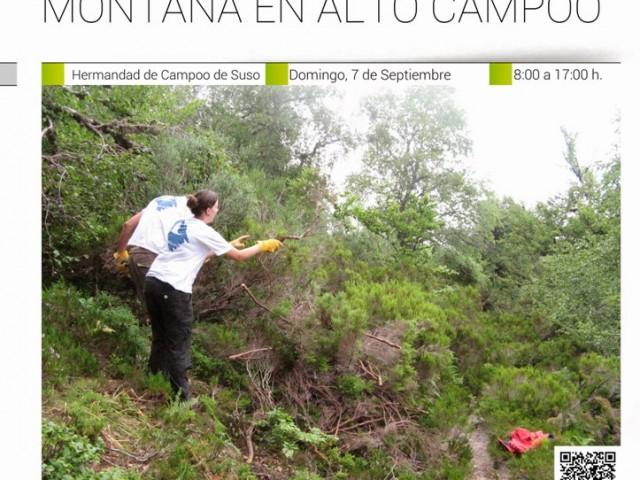 RECOLECCIÓN DE SEMILLAS DE ESPECIES VEGETALES DE ALTA MONTAÑA EN ALTO CAMPOO. 7 de Septiembre.