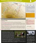 Camino al hayedo de Suano PR-S 85. Suano.