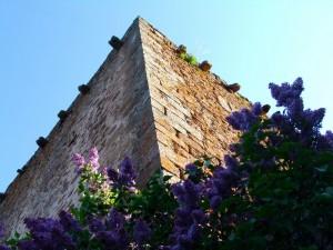 TorreProano2