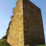 TorreRuerrero3