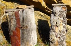 aldea apicultura pag 97 (3)