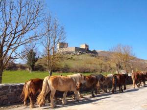 Castillo de Argüeso.