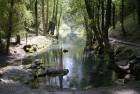 Senda desde el Nacimiento del Río Ebro PR-S 80. Fontibre.