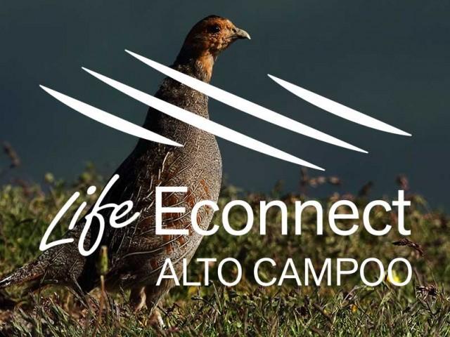 Life Econnet Alto Campoo