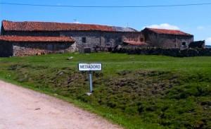 mediadoro