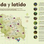 portico_molledo-2