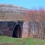 puente casasola OL4