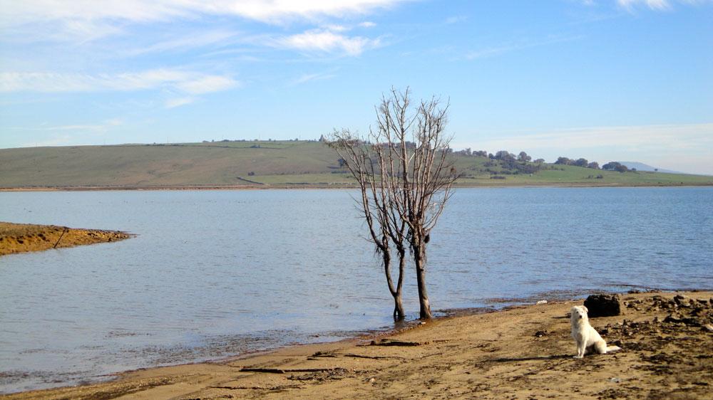 Viastas dewl pantano desde Quitanamanil