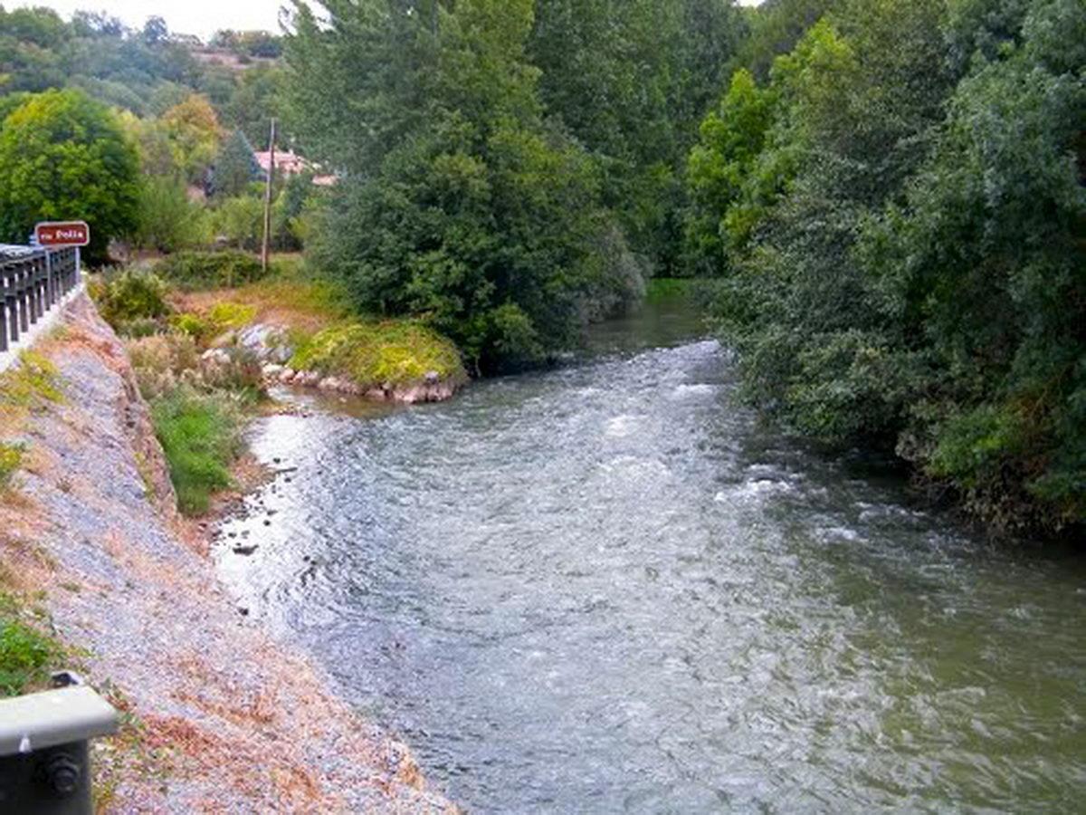 rio polla